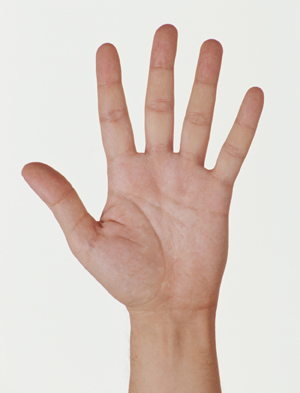 Palm view of hand with fingers splayed.