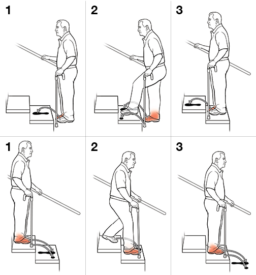 6 steps in using a cane on stairs