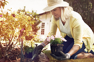 Woman wearing a hat, planting flowers in her backyard.